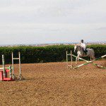 Obstacle Cheval Ferme Equestre Maroc