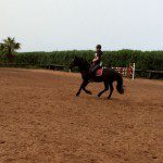 Atlas au galop